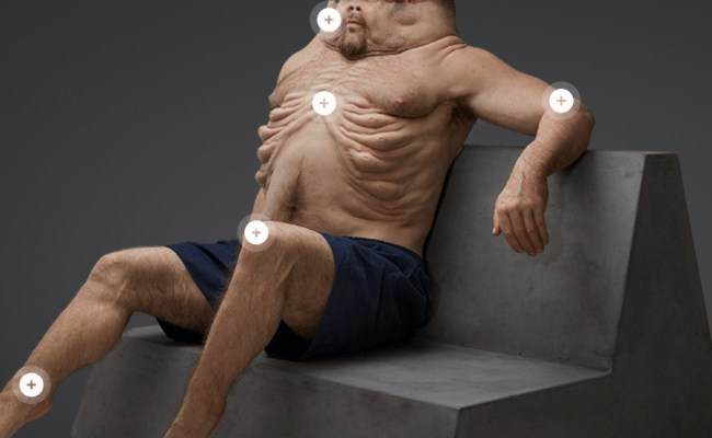 Graham Only Human Designed To Survive A Car Crash