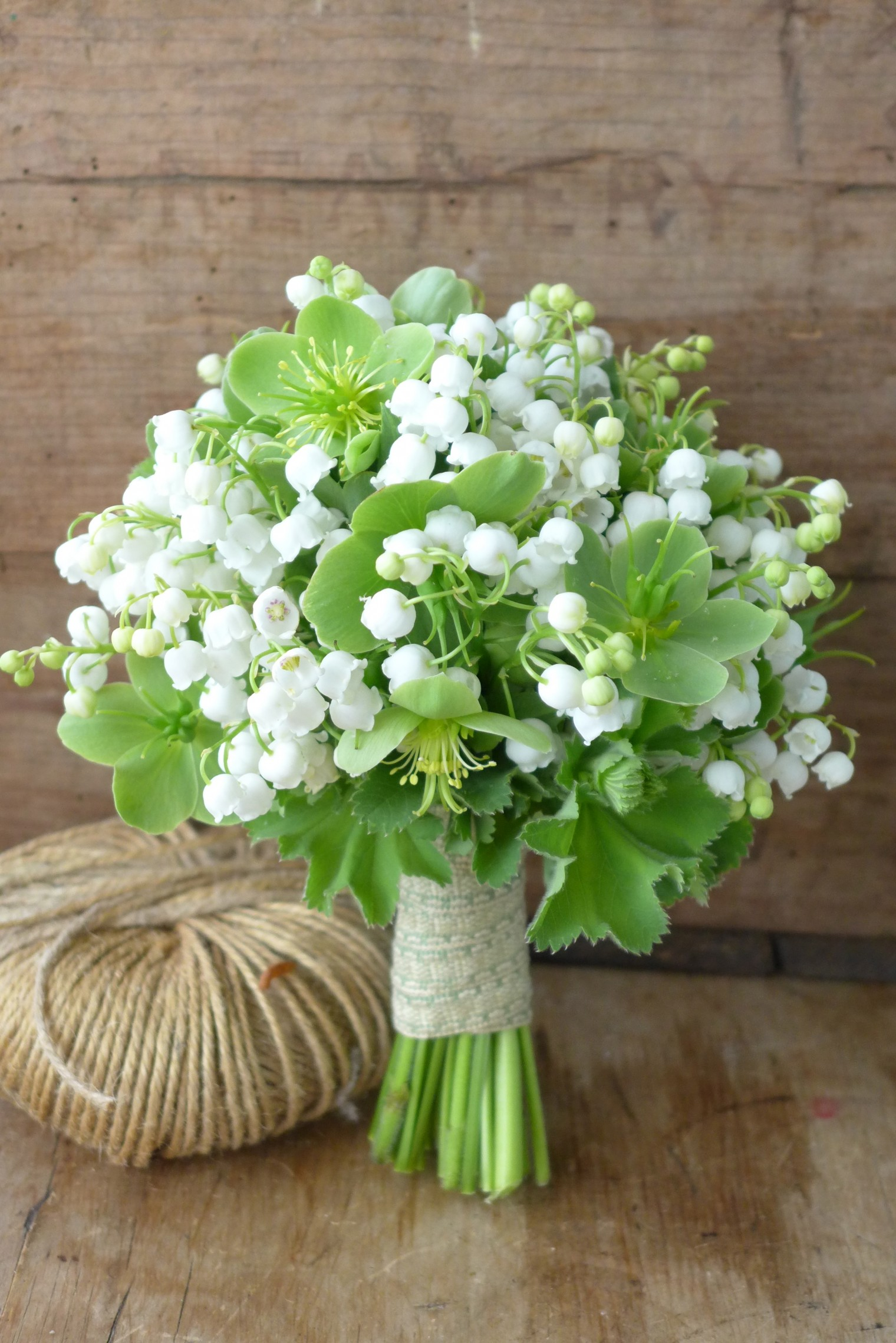 Lily of the valley  Pulteney Bridge Flowers
