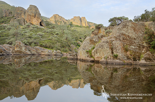 Bear Gulch Reservoir, Pinnacles National Monument
