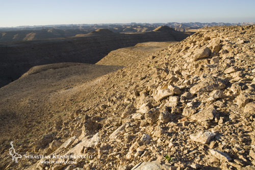 Desert, Hawf Protected Area, Yemen