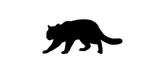 Iriomate Cat Silhouette