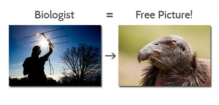 BiologistFreePicture