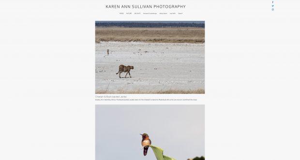 Karen Ann Sullivan