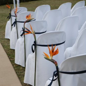 Pumba Private Game Reserve Weddings Ceremony Seating Details