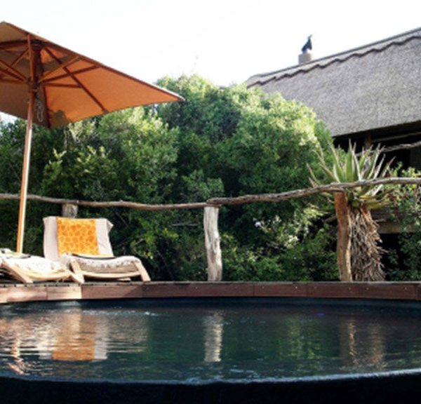 Pumba Msenge Bush Lodge  Chalet Plunge Pool