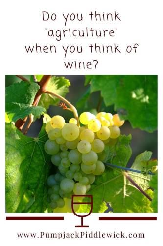 Are grapes for wine a crop - find out at PumpjackPiddlewick_