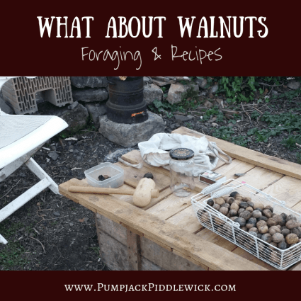 What about Walnuts - Foraging and Recipes at PumpjackPiddlewick