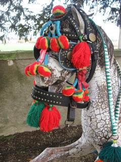 Festive horses harness at PumpjackPiddlewick