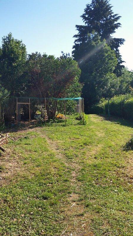 Completed duck enclosure at PumpjackPiddkewick