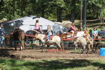 pony ride (1 of 1)
