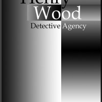 PUYB Blog Tour Review: Henry Wood Detective Agency by Brian Meeks