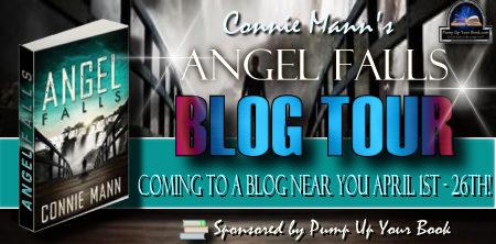 Angel Falls banner