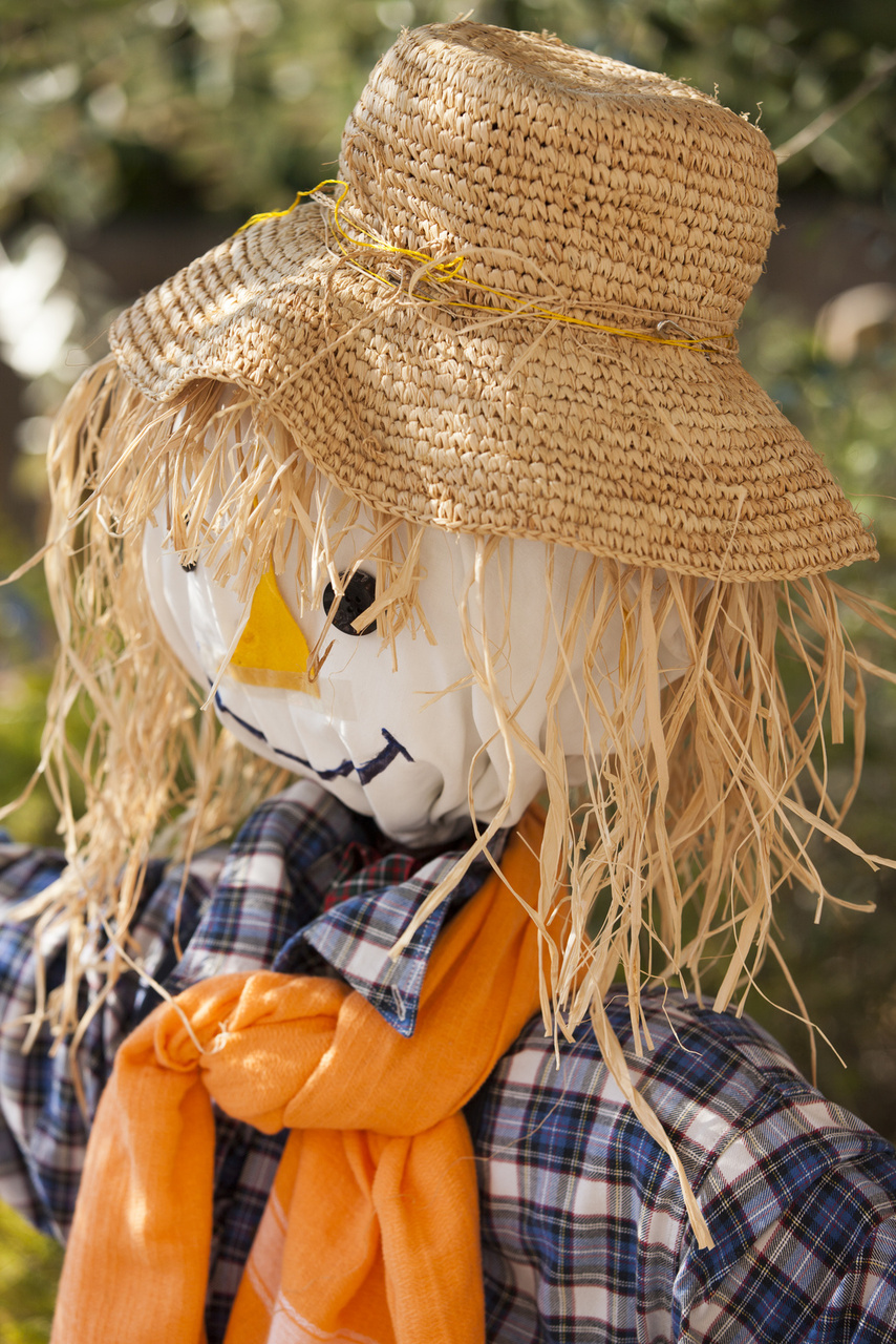 Welcome Guests With A Fabulous Scarecrow