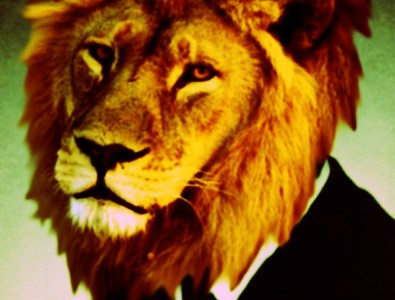 #AnimalsLoveDirectors: Wes Anderson