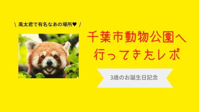 アイキャッチ_千葉市動物公園レポ