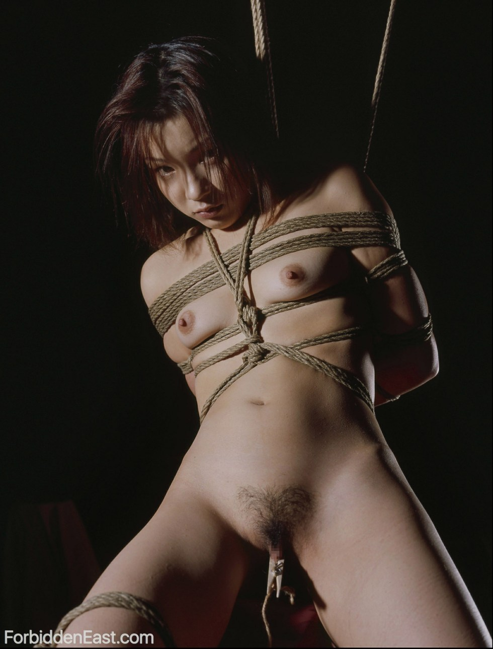 French bdsm shibari bondage rope hogtied 7