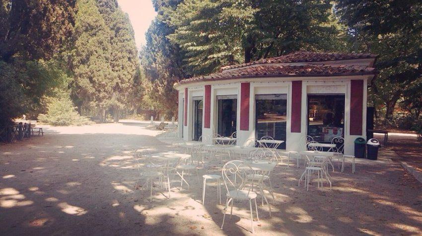 Caffé Nemorense, Roma