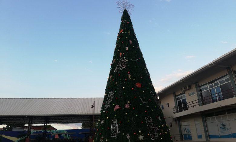 Photo of Más de 115 mil luces iluminarán mega árbol navideño en Puntarenas