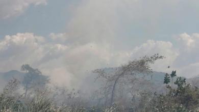Photo of Gran quema de charral pone a correr a bomberos en El Roble de Puntarenas