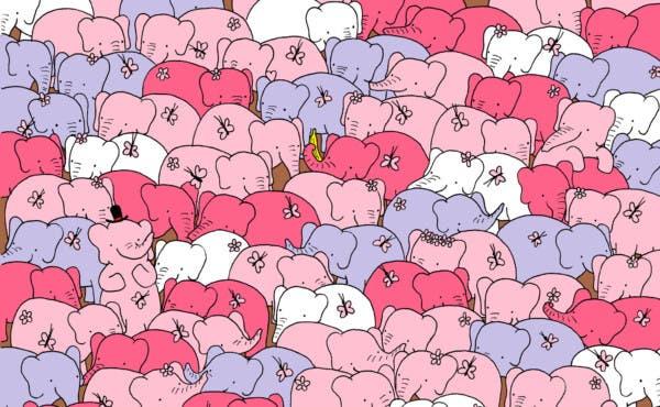 Photo of ¿Ya encontraste el corazón entre los elefantes? Nuevo reto viral
