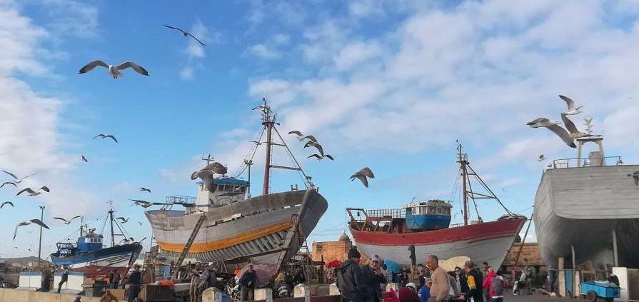 essaouira al porto con barche e tantissime persone