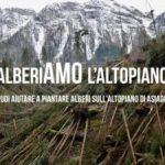 titolo articolo iniziativa alberiamo l'altopiano