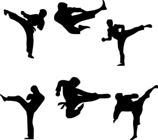 https://i0.wp.com/www.puntofape.com/wp-content/uploads/2012/05/Martial-Arts.jpg
