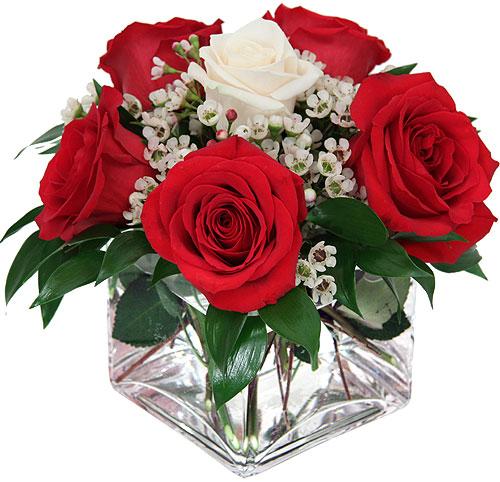 composizione con rose rosse e una rosa bianca al centro