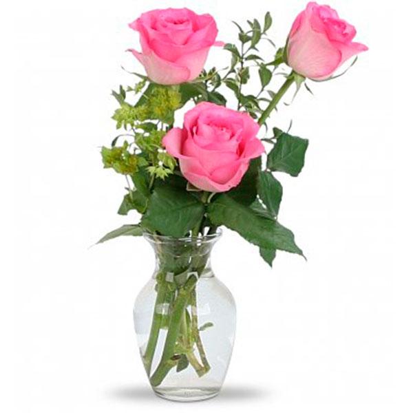 tre rose rosa da consegnare a domicilio