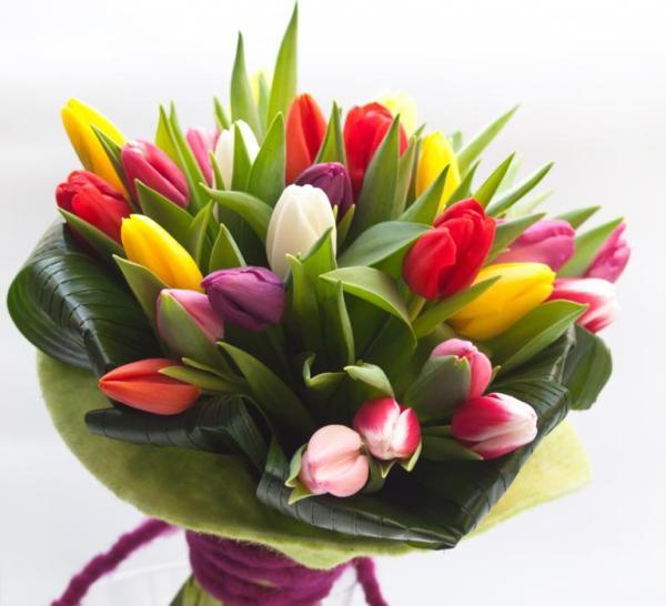 mazzo con tulipani misti colorati