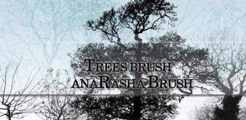 treebrushes