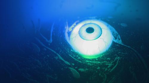 ojo-camara