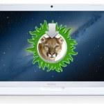 Cómo instalar OS X Mountain Lion en Macs no soportadas
