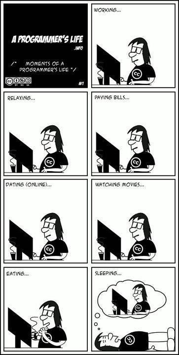 programadores-divertido (4)
