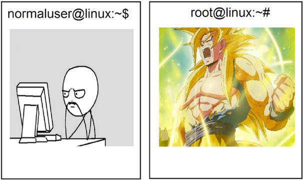 usuario normal vs root