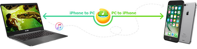 iphone to pc
