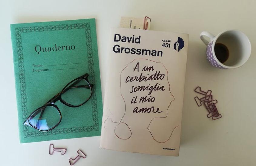 A un cerbiatto somiglia il mio amore di David Grossman