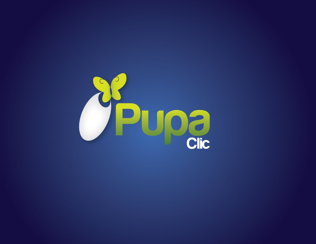 Pupa Clic Project – Lead – Accounts Management System