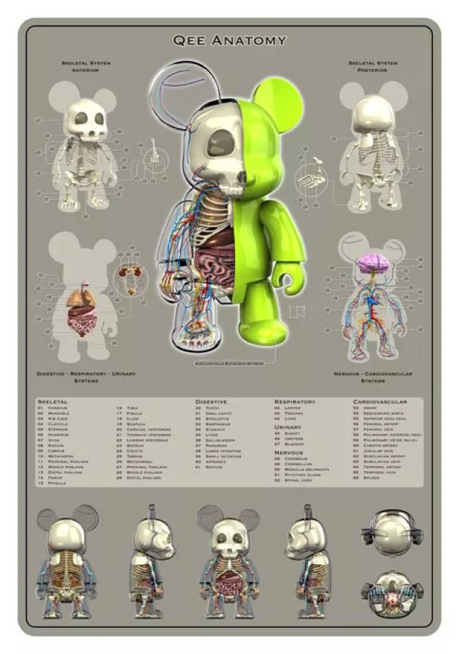The Dissections of Jason Freeny