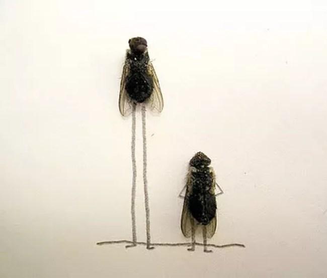"""The art of """"Flychelangelo"""" 5"""