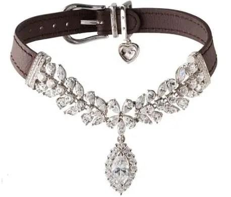la jeune tulipe dog collar - Você daria este colar para seu Pet?