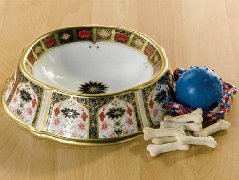 royal crown derby pet bowl - Você daria este colar para seu Pet?