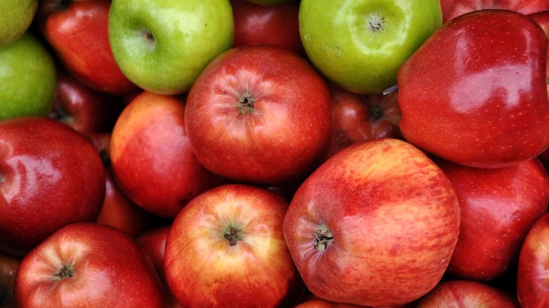 Are Apples Good for Dogs-001