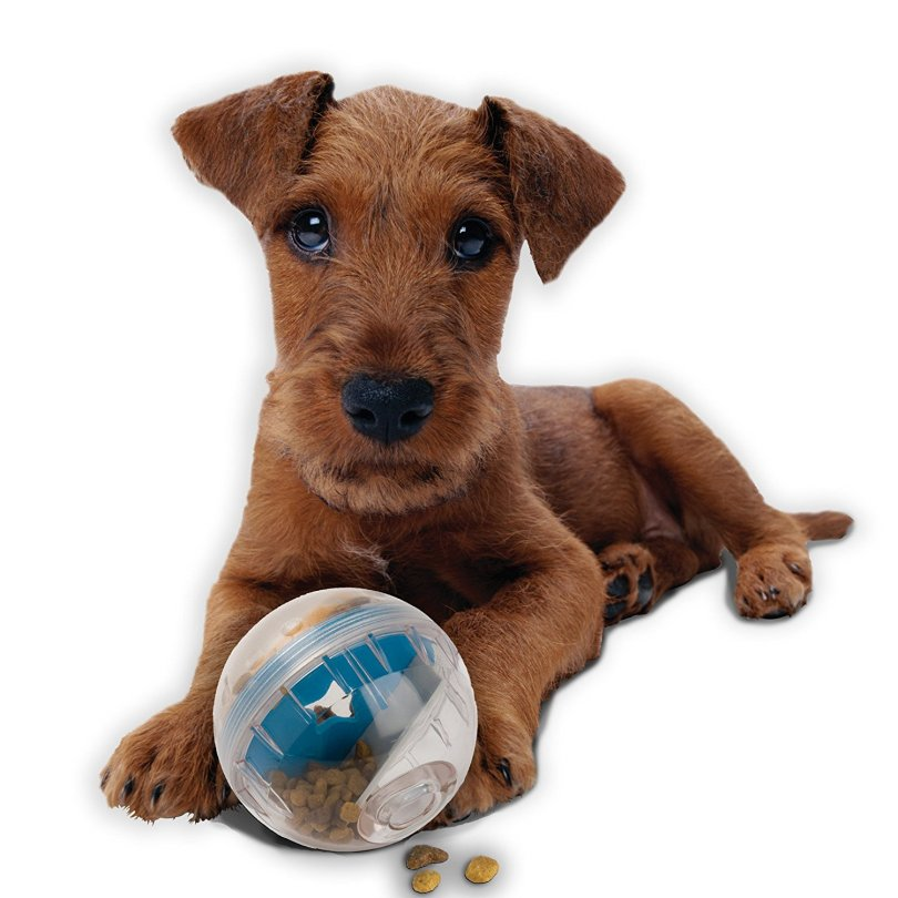 Image of petzone IQ treat ball, a pet gift idea