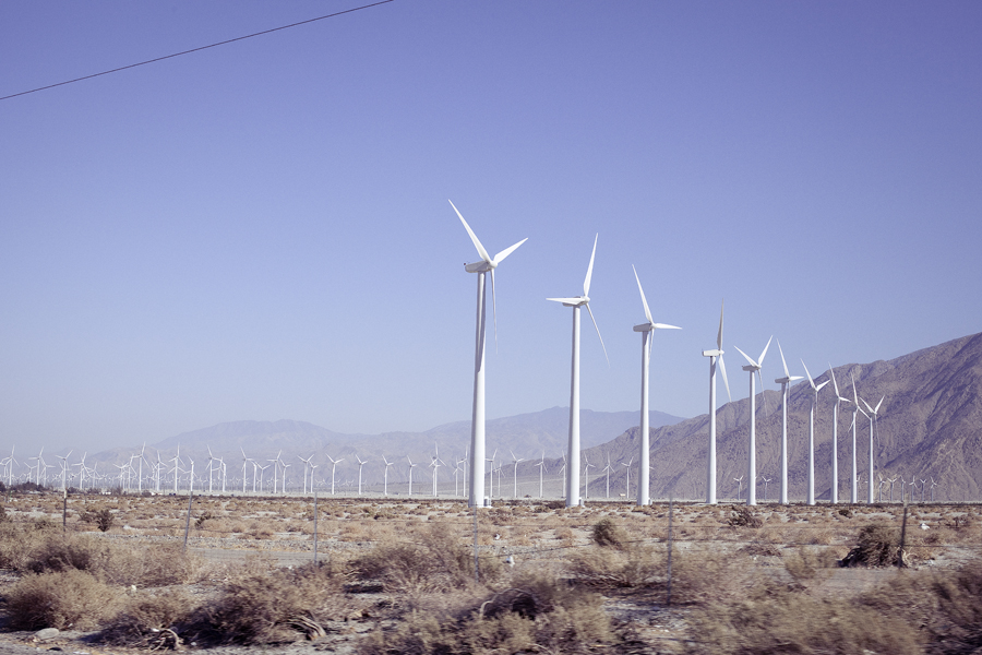 A multitude of windmills along the highway.