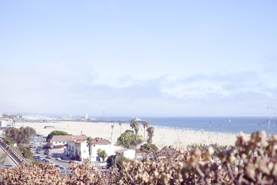 View of Santa Monica beach.