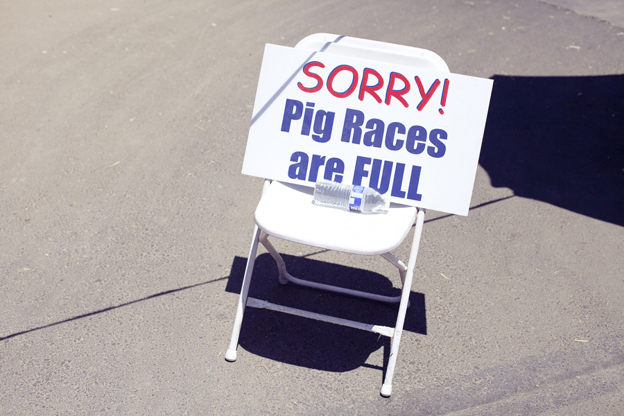 Pig racing sign board at the Orange County Fair.