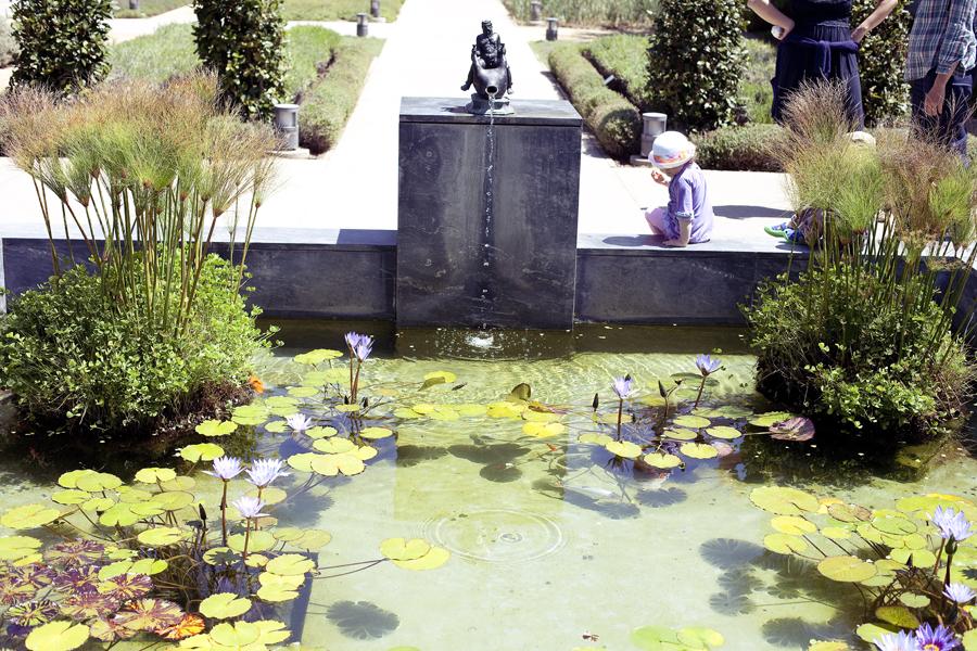 Girl playing at a lotus pond at the Getty Villa.