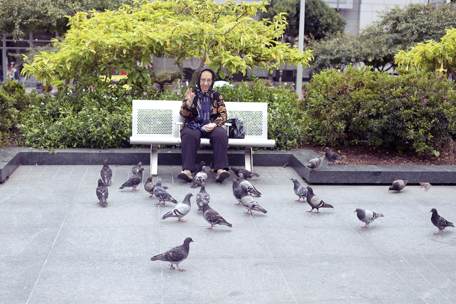 Old lady feeding pigeons on Union Square in San Francisco.
