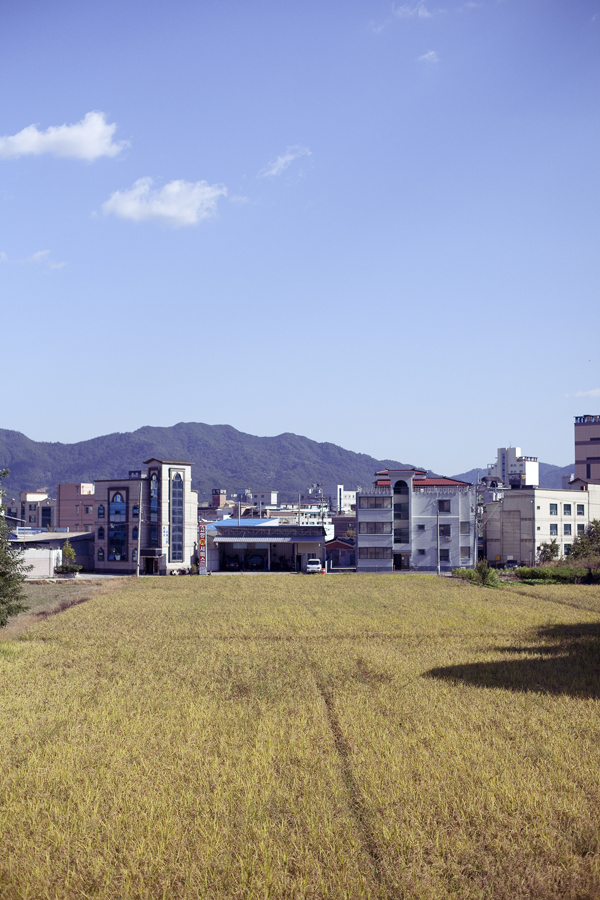 Field among buildings at Sangju, South Korea.